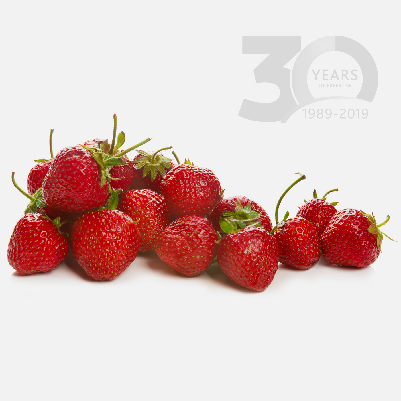 Using strawberries, unlock the possibilities for flavours, aromas and sweeteners in animal feed and pet food production